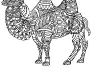 Camels and Dromedaries Coloring Pages for Adults