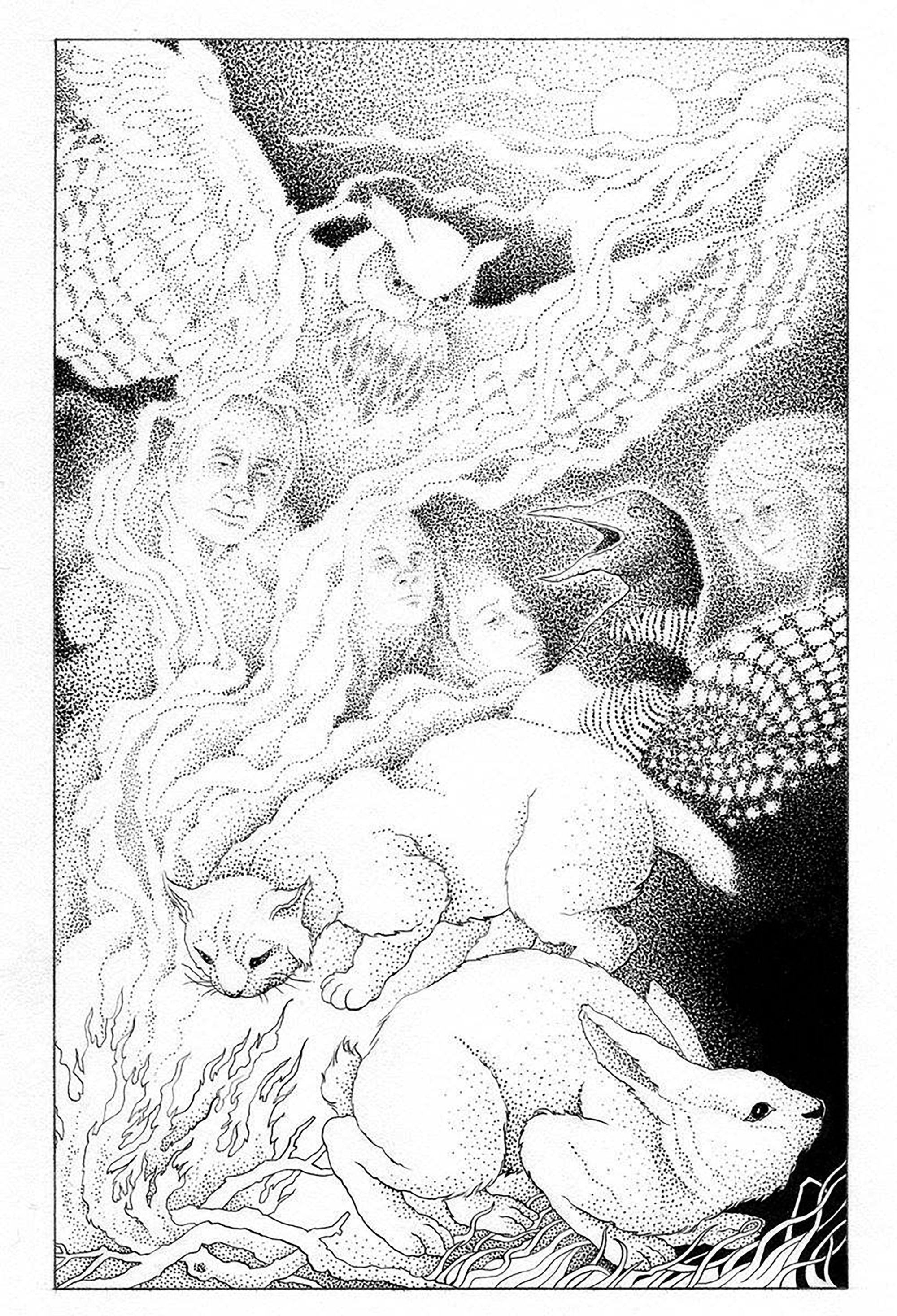 Coloring page animals and spirits marc coyle