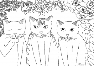 Coloring tree little funny cats by miwah