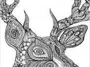 Deers Coloring Pages for Adults