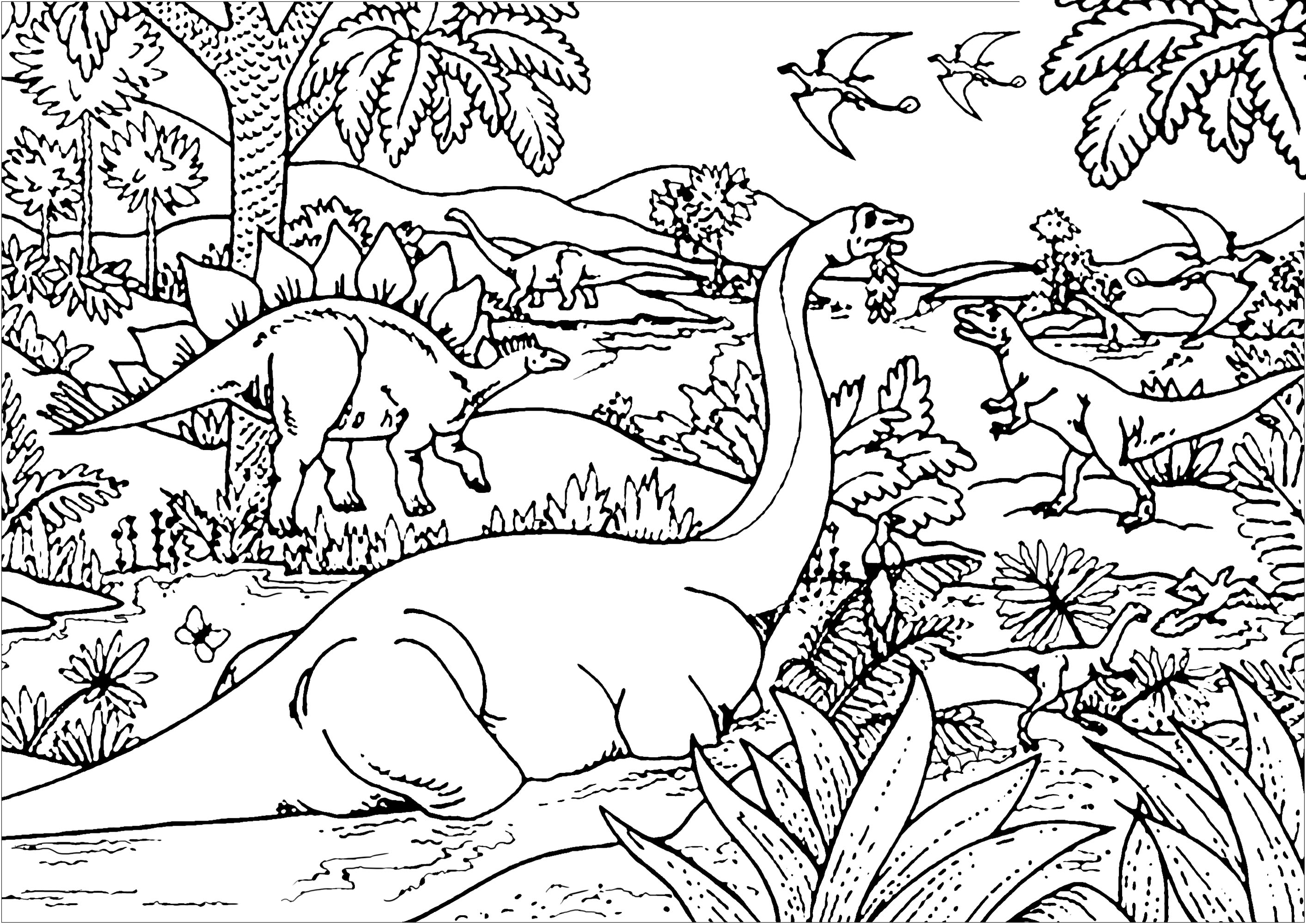 Color all there different types of Dinosaurs : Diplodocus, Tyrannosaurus, Stegosaurus, Pterodactyl ...