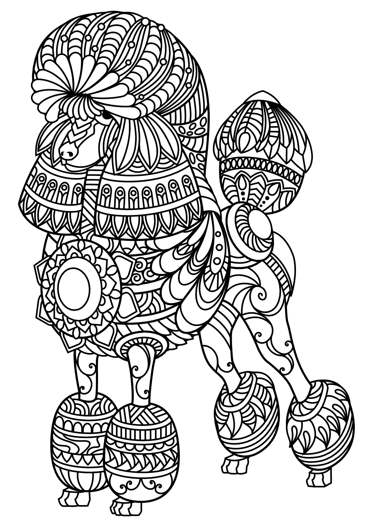 Free book dog poodle Dogs Adult Coloring Pages