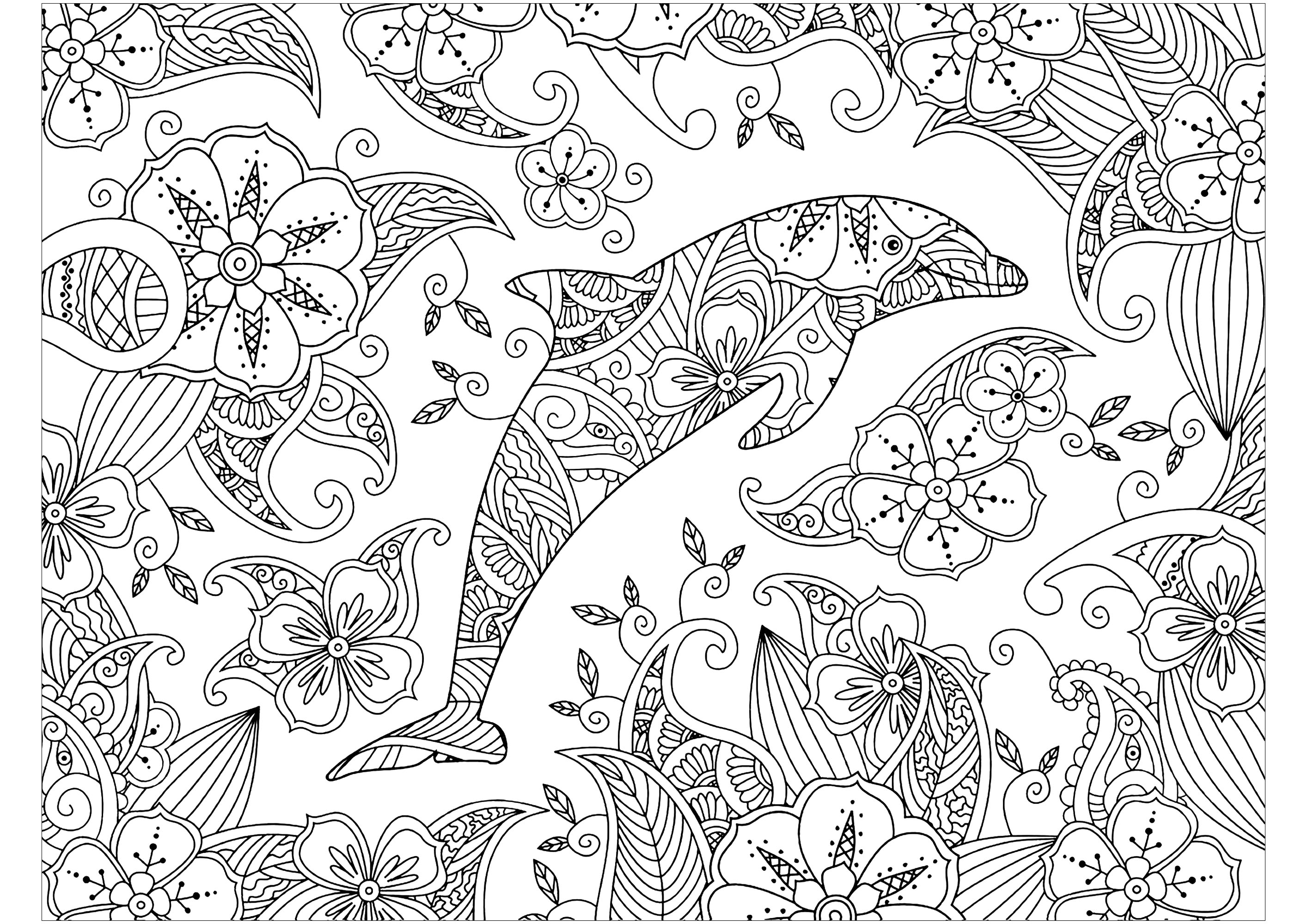 Dolphin surrounded - Dolphins Adult Coloring Pages