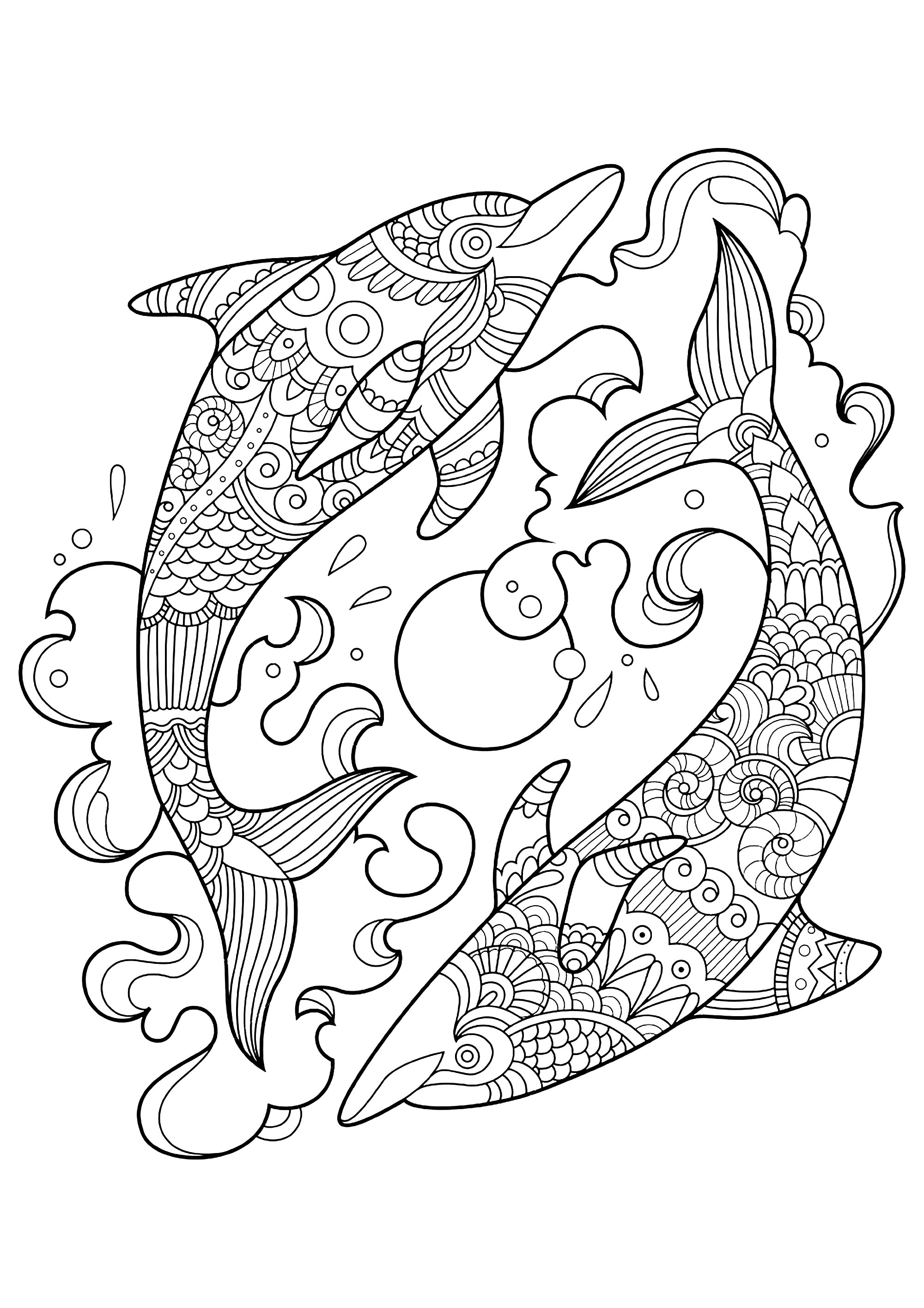 Two Dolphins In The Ocean Dolphins Adult Coloring Pages