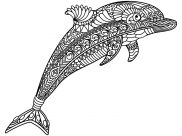 Dolphins Coloring Pages for Adults