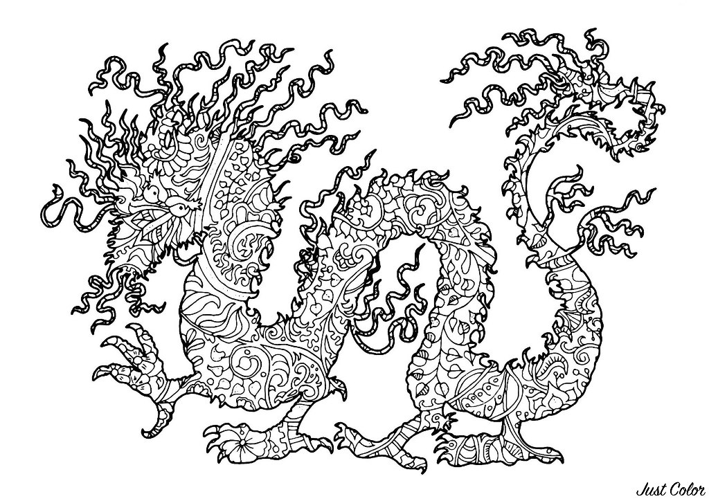 Full dragon in a complex coloring page