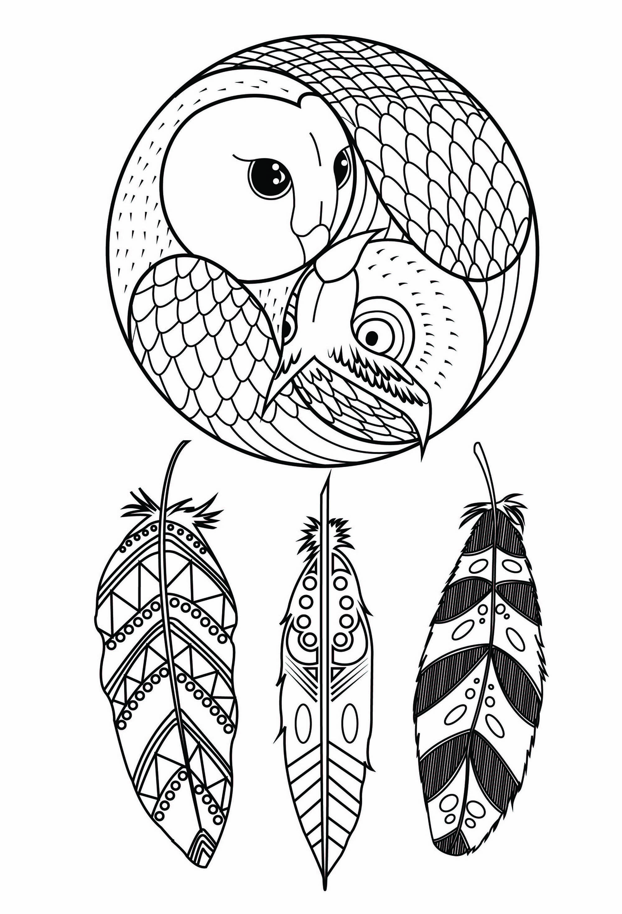 Coloring owl dreamcatcher