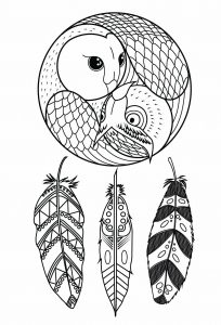 Coloring owl dreamcatcher