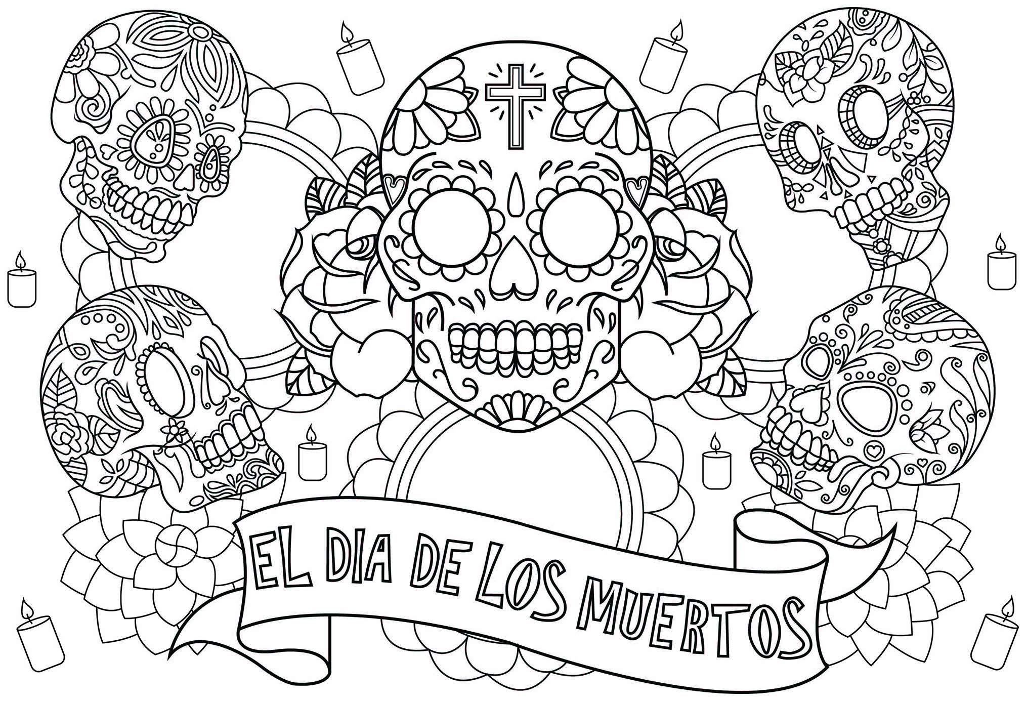 Skull - Coloring Pages for Adults