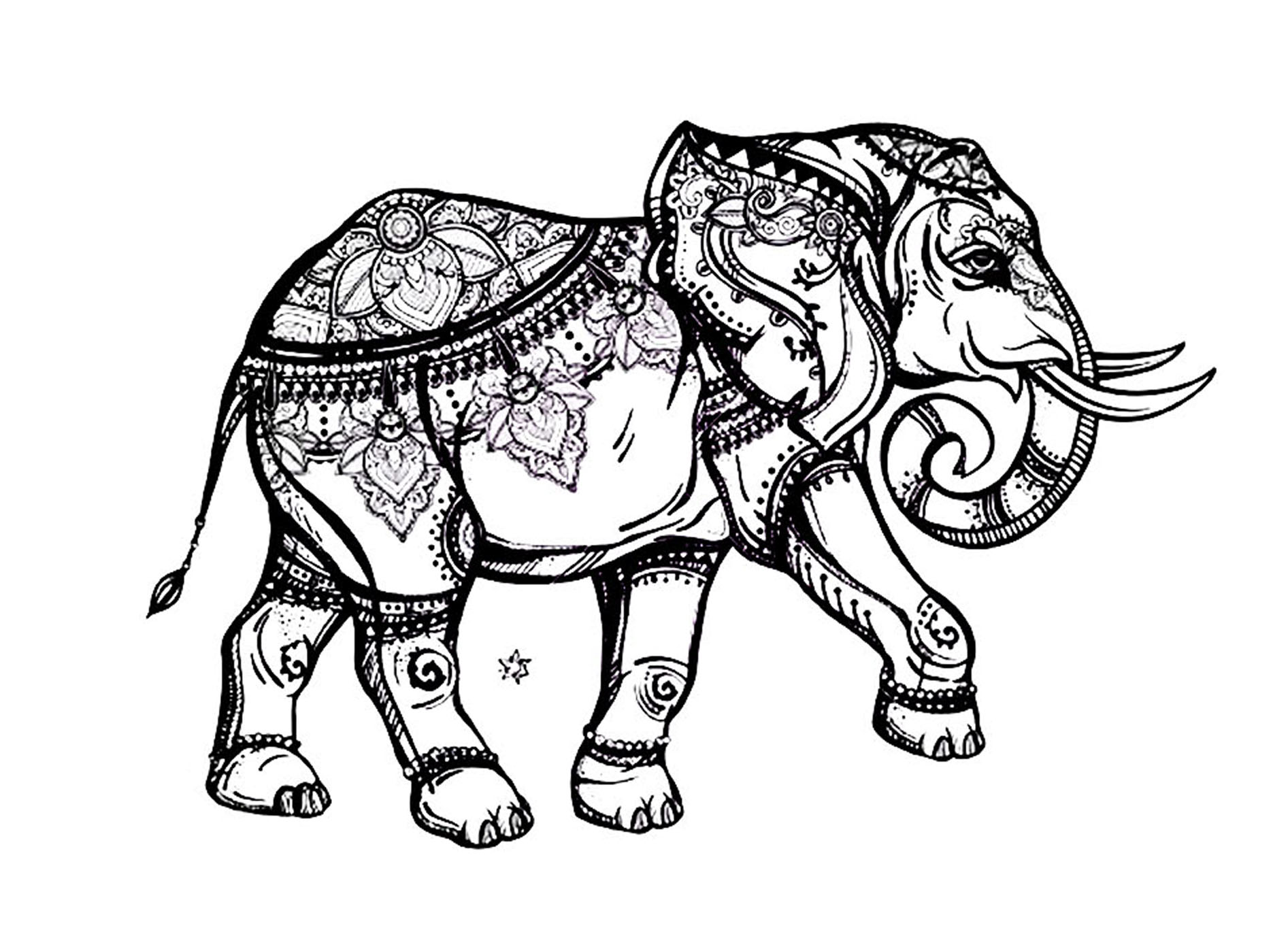 Elegant elephant - Elephants Adult Coloring Pages