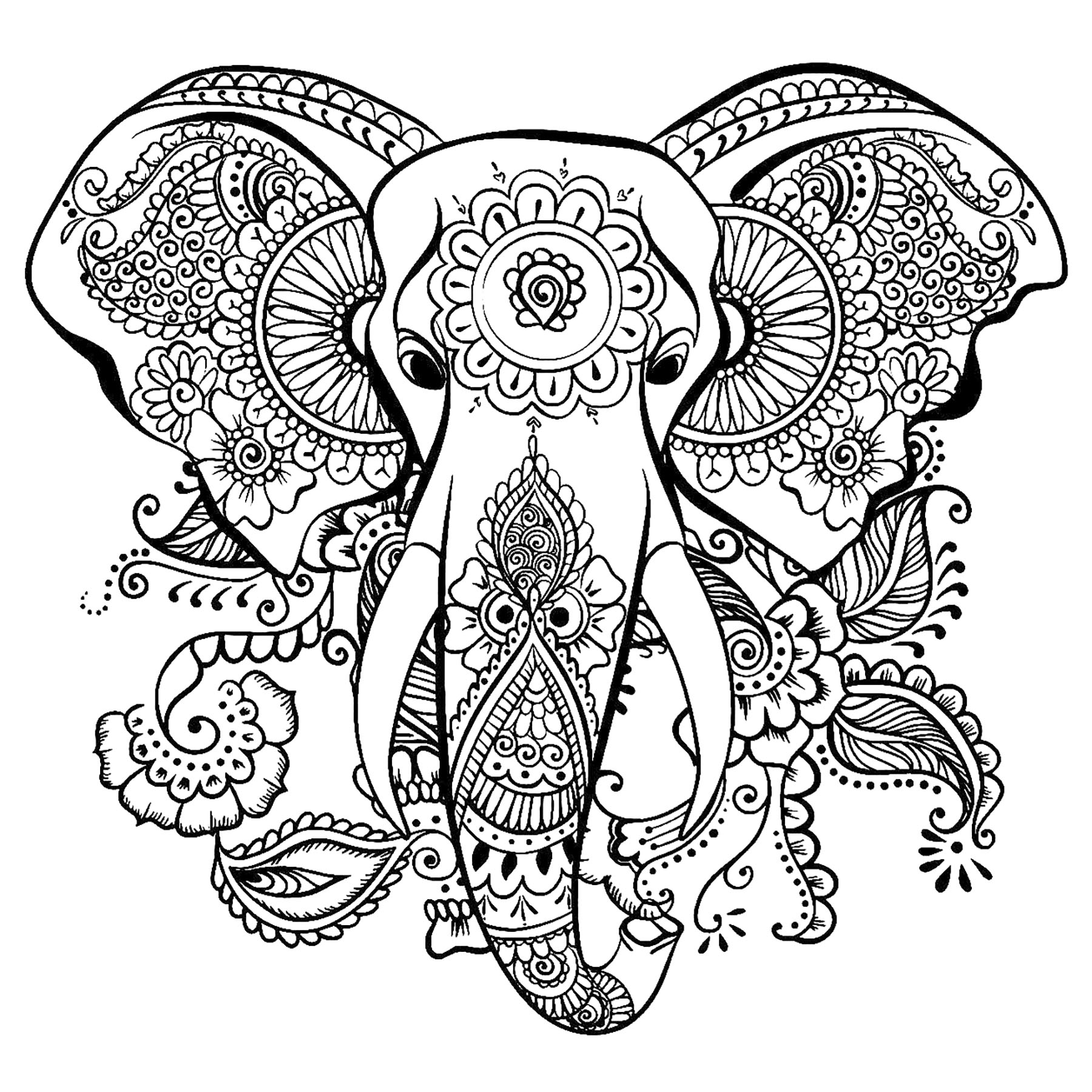 Elegant drawing of an elephant - Elephants Adult Coloring ...