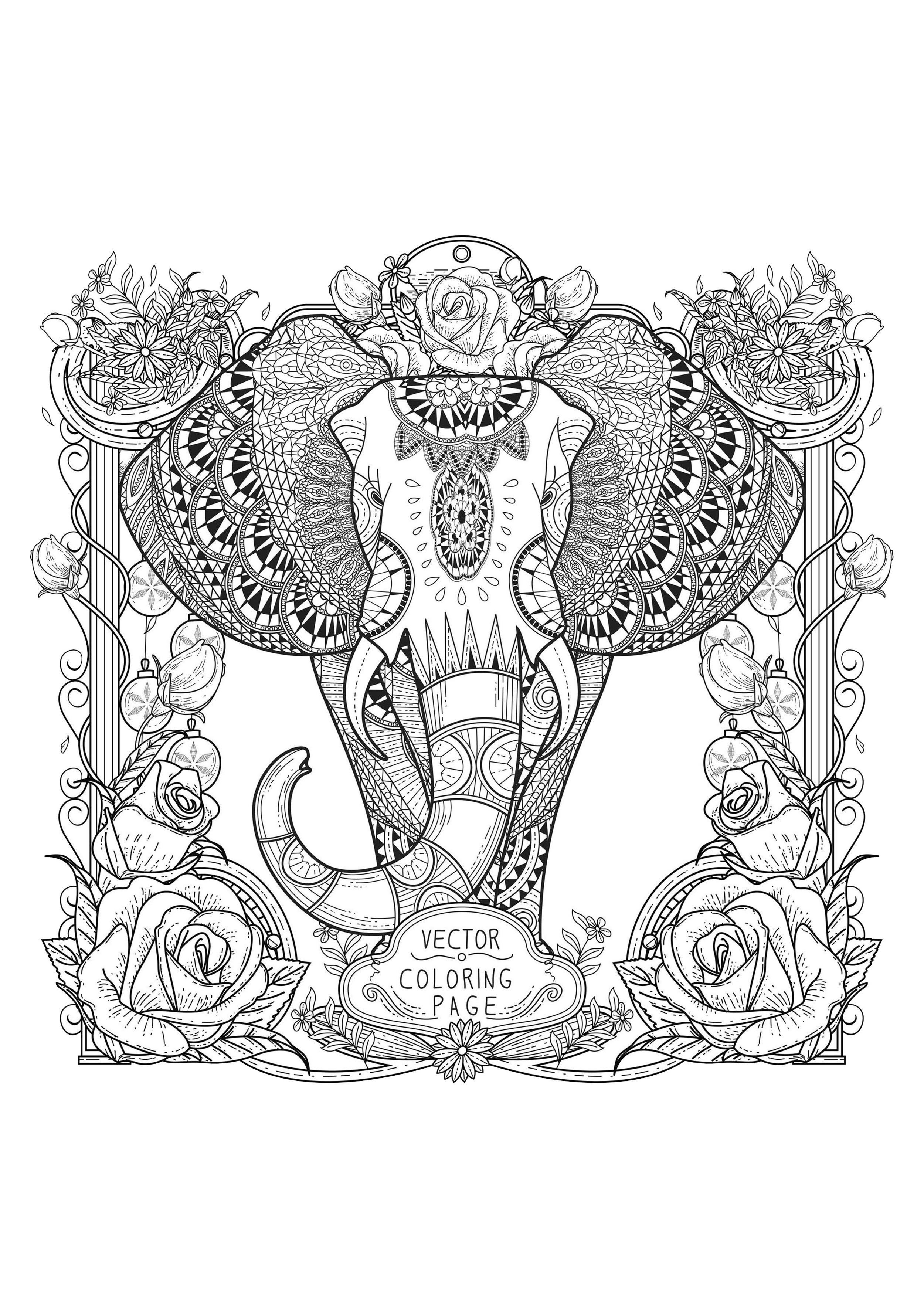 Huge Elephant and beautiful designs and complex illustrated border