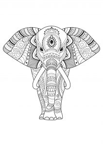 Coloriage Elephant Simple.Elephants Coloring Pages For Adults
