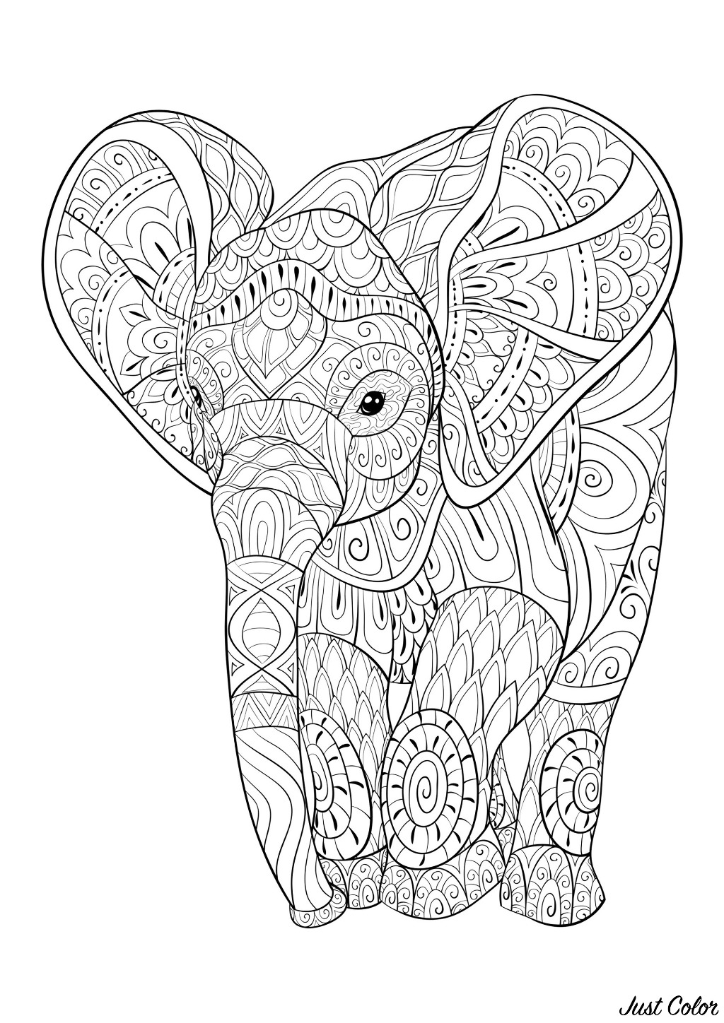 Young elephant full of beautiful patterns to color