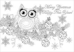 Coloring christmas owl on a branch with text