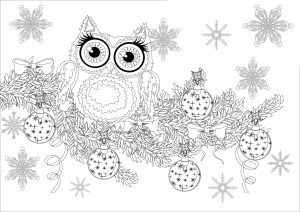 Coloring christmas owl on a branch without text