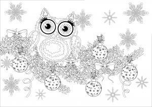 coloring-christmas-owl-on-a-branch-without-text