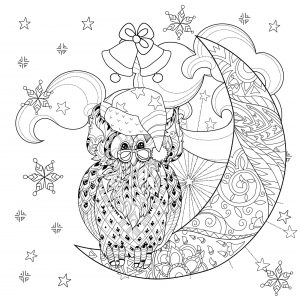Coloring christmas owl on moon