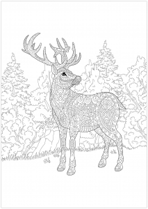 Christmas deer in a forest