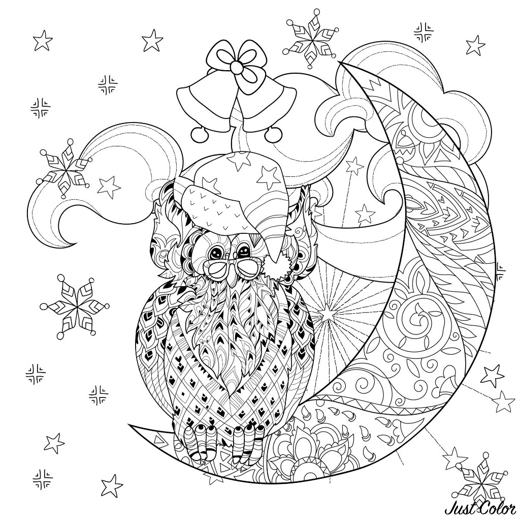 Color this Cartoon Owl with glasses and Santa Claus hat, sitting on a half moon, with beautiful winter clouds and stars