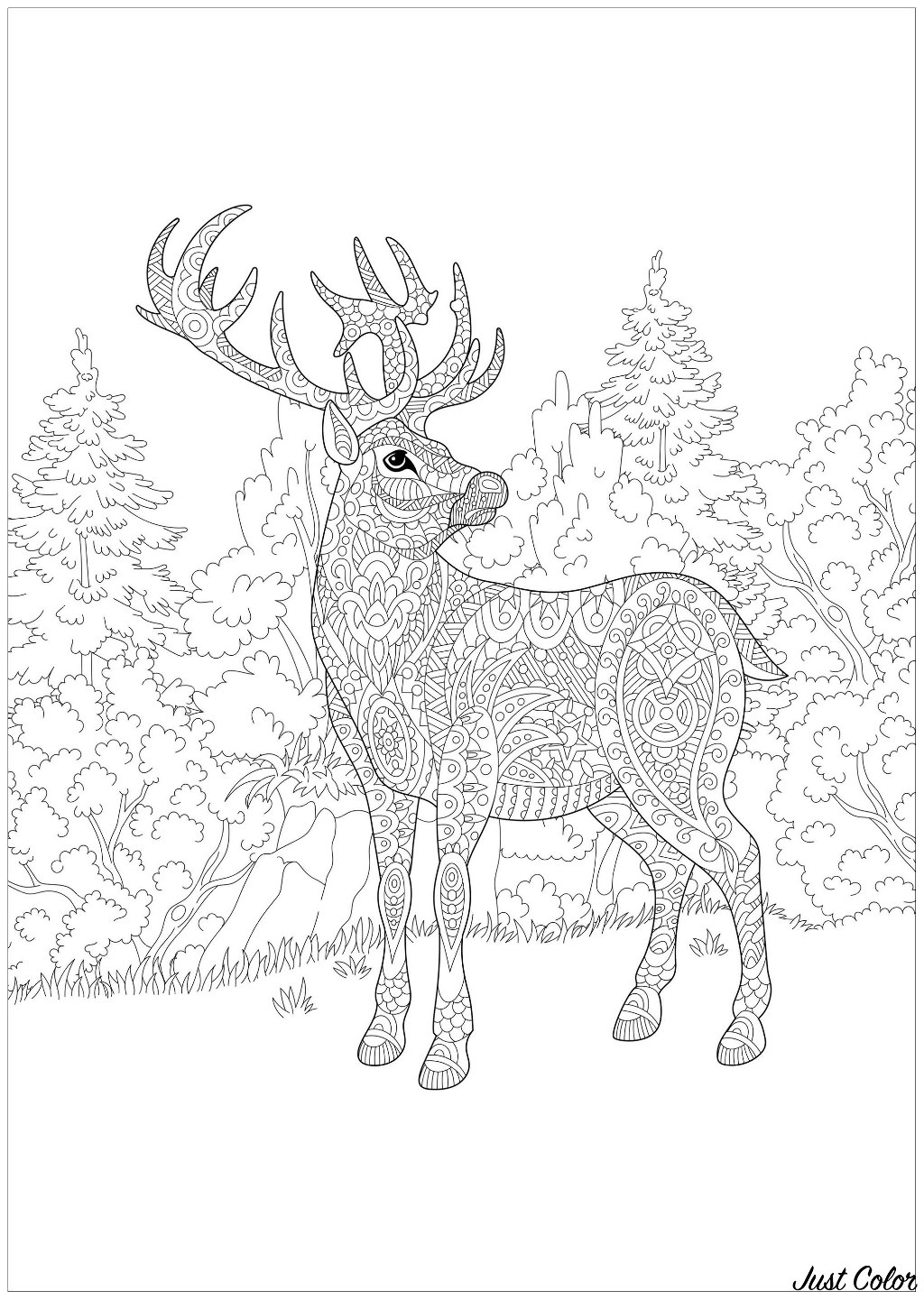A majestic deer in the forest : a lot of abstract details to color