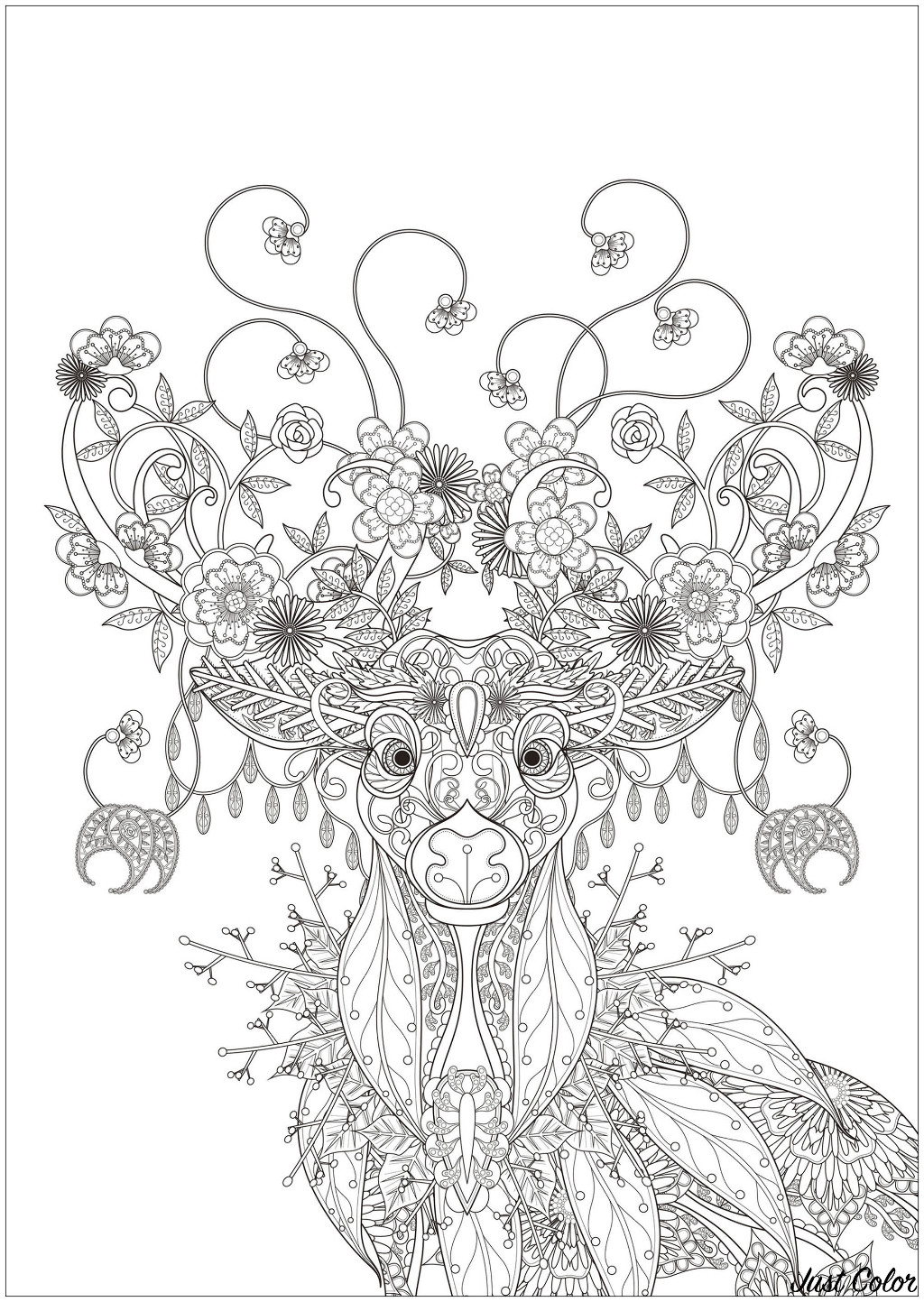 Magnificent Deer drawn with elements inspired by nature : flowers, leaves, tree branches ...