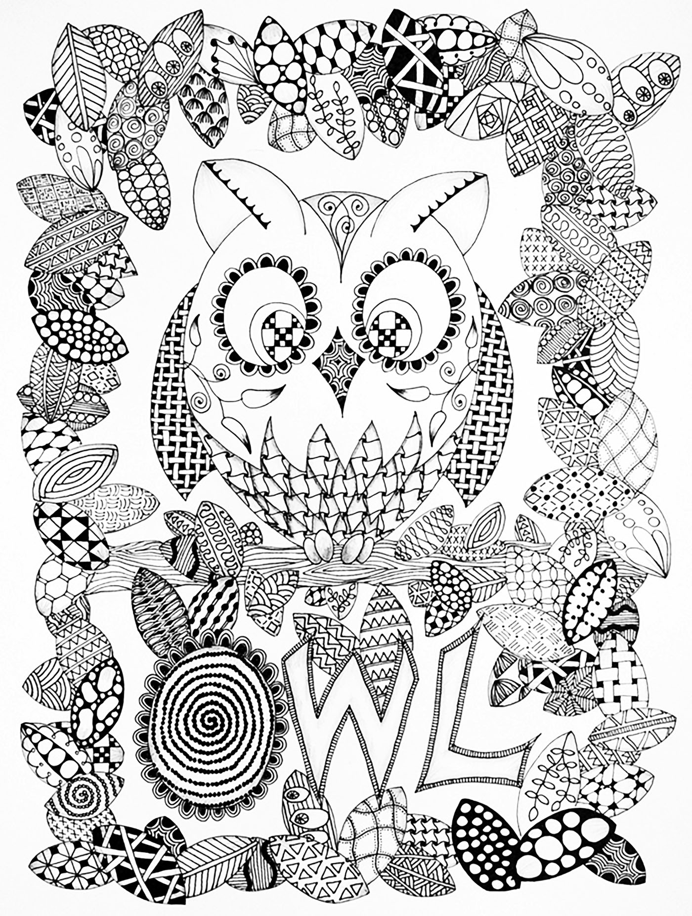 Coloring pages for adults zentangle - Owl Drawing Zentangle Style From The Gallery Events Halloween
