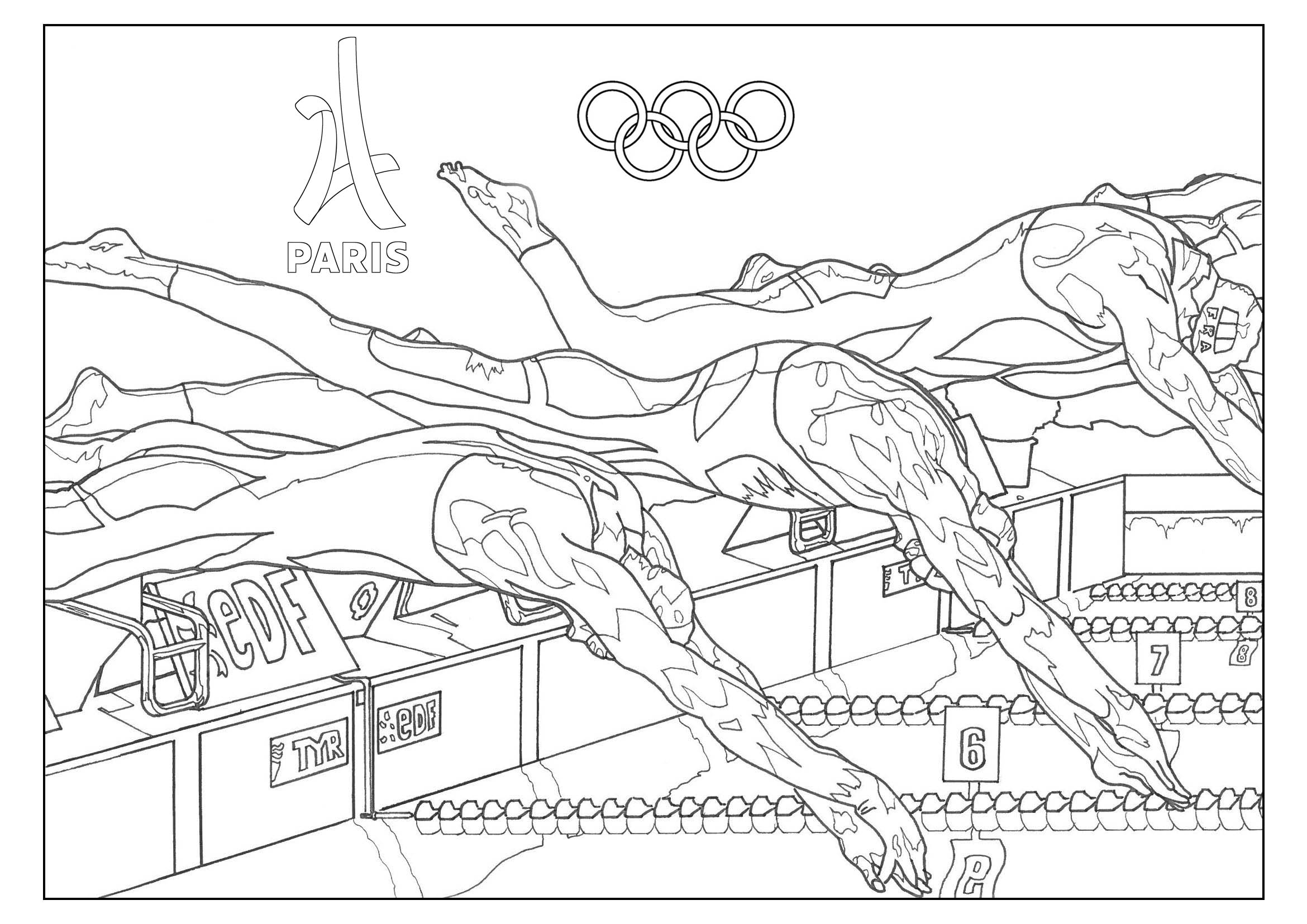 Olympic Games Swimming Paris 2024 Olympic Sport Adult Coloring