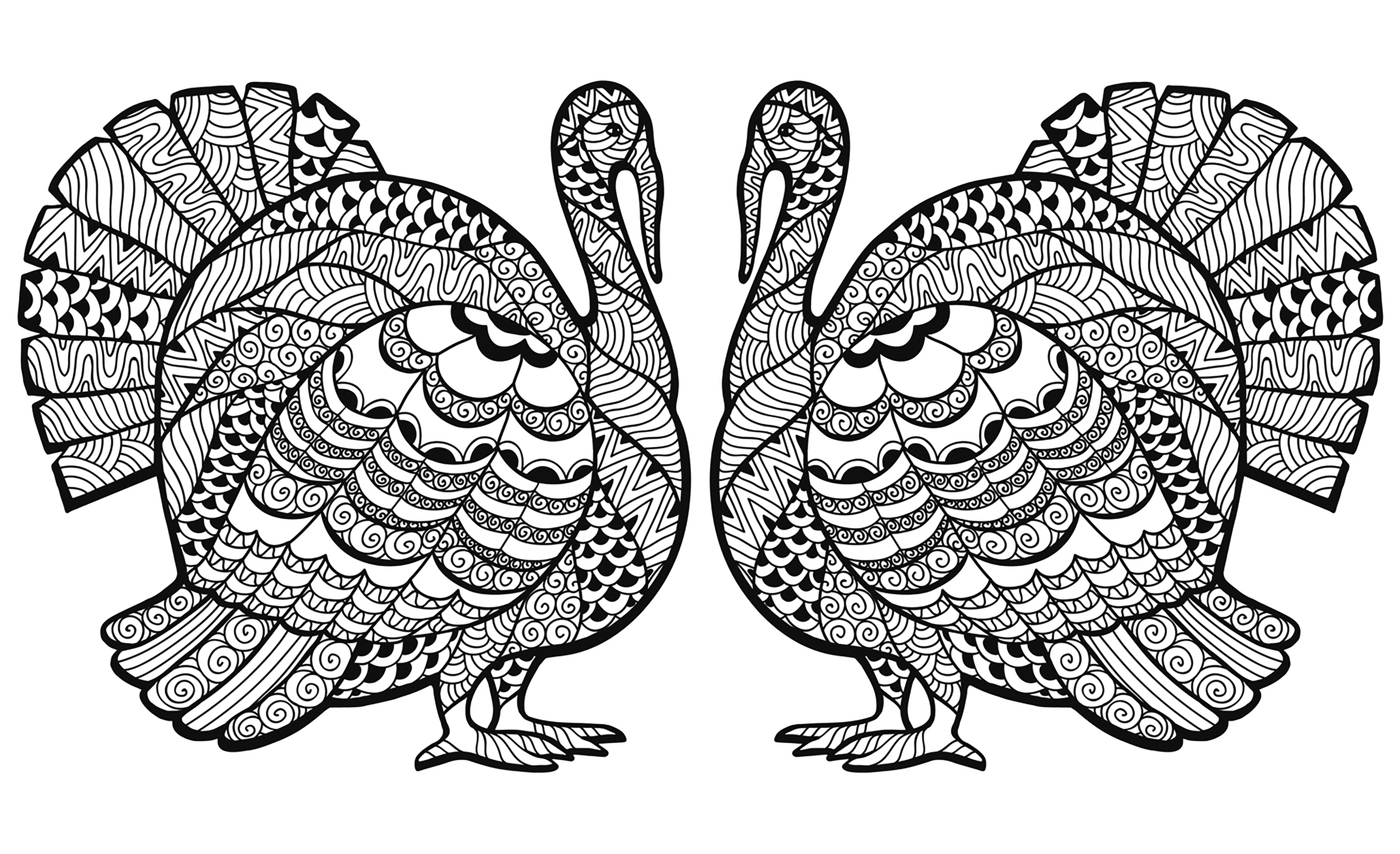 Double Turkey Zentangle Coloring sheet | Thanksgiving - Coloring ...