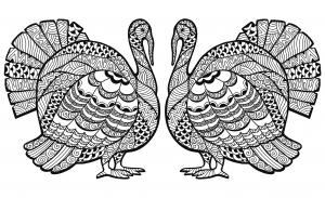 Double Turkey Zentangle Coloring sheet free to print