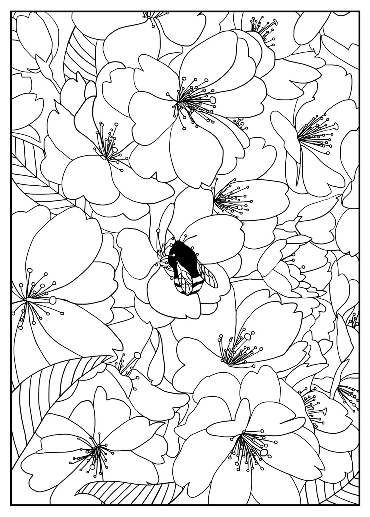 Coloring pages trees and flowers - Cherry Tree Exclusive Coloring Page From The Gallery Flowers And Vegetation Artist