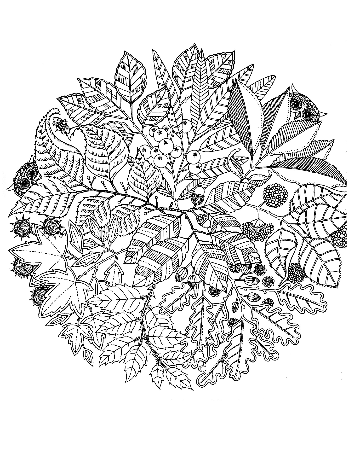 A Mandala composed of leaves and berries, behind which hides discreet owls