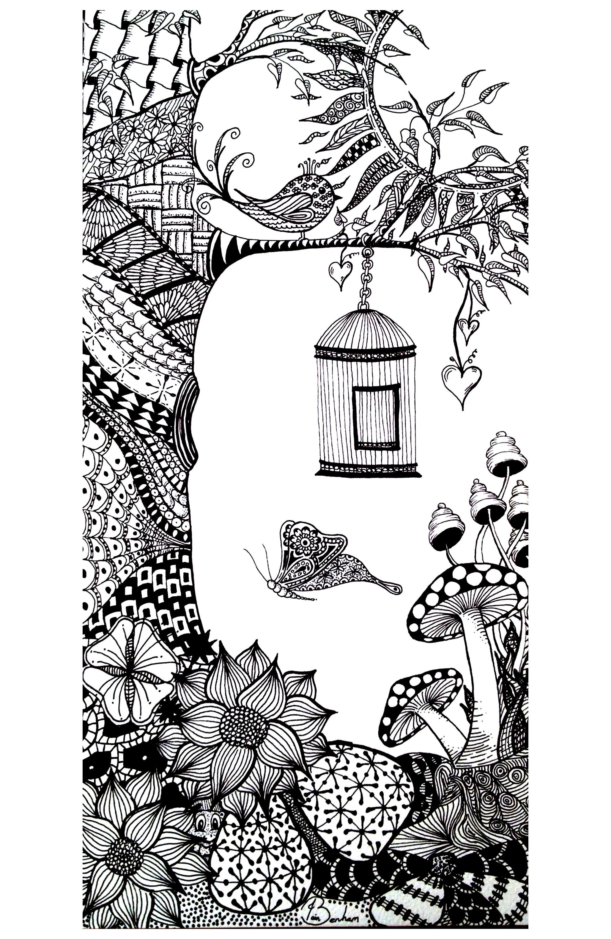 Vegatation Butterfly Bird Flowers Adult Coloring Pages