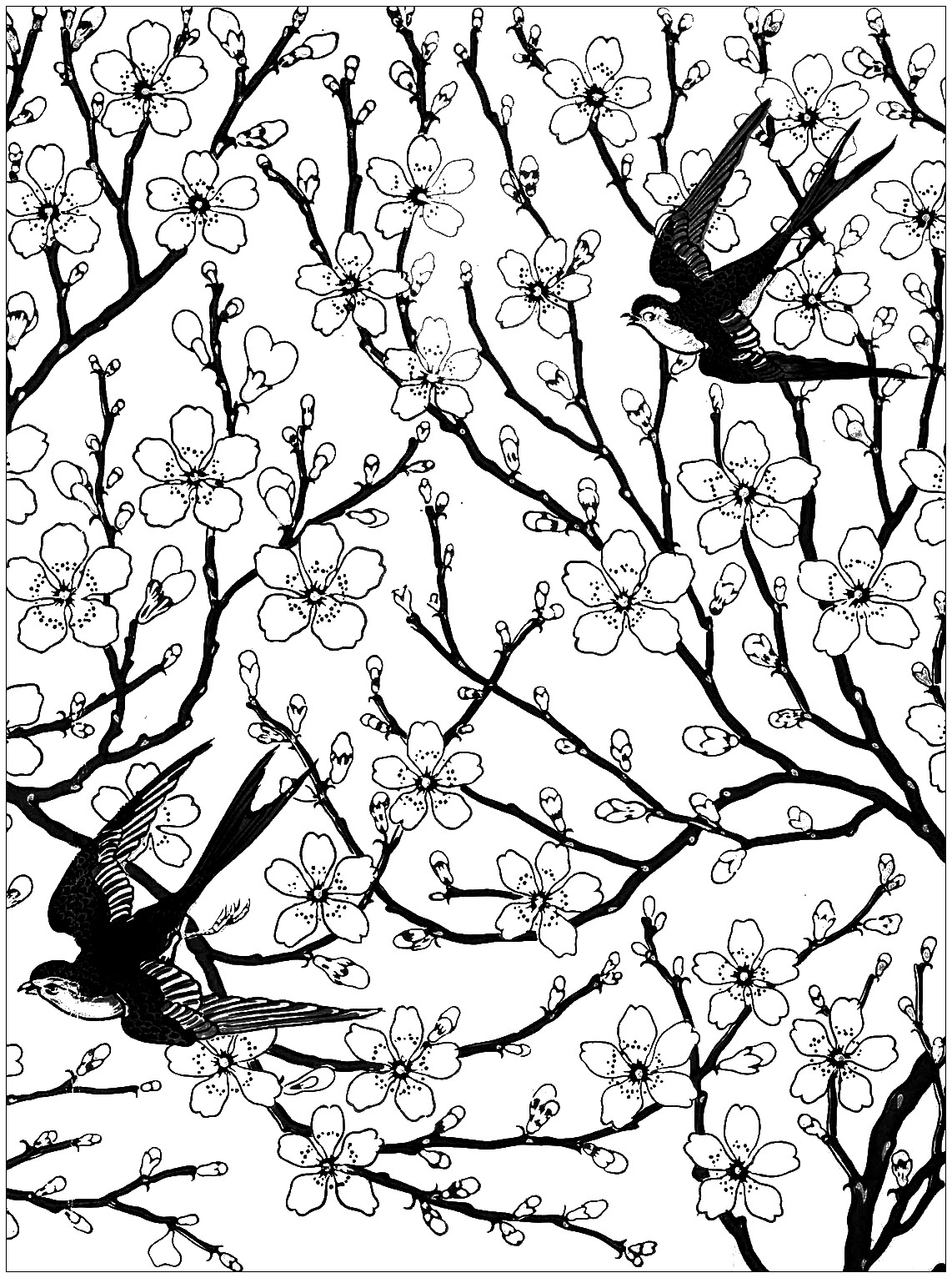 Almond blossom and swallow, coloring page inspired by a wallpaper frieze by Walter Crane (1878)