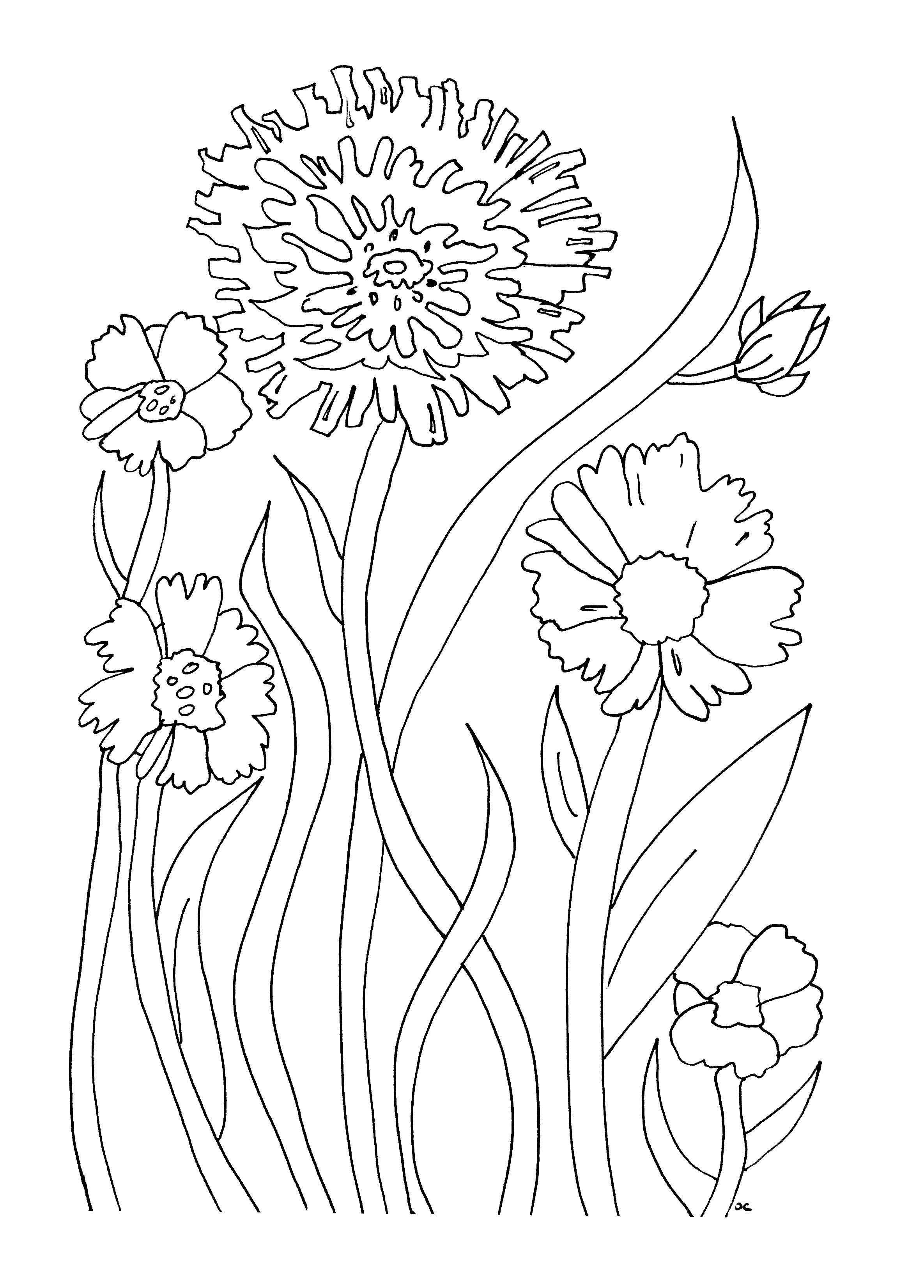 simple flowers flowers and vegetation coloring pages for