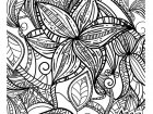 Flowers and leaves with elegant patterns