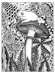 Frog on a mushroom