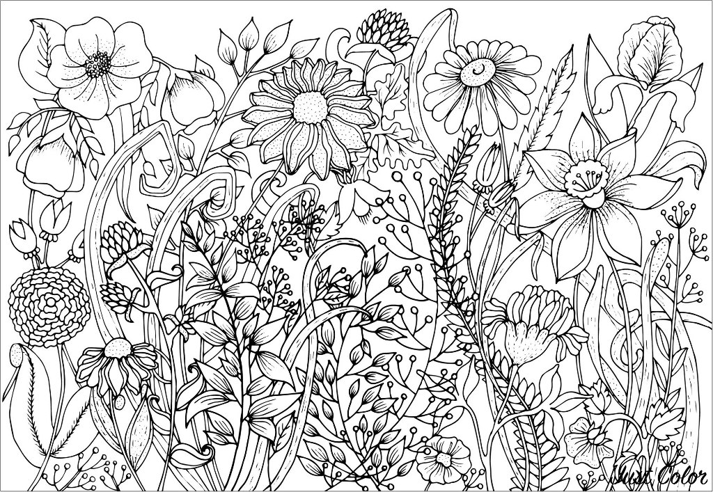 - Cute Spring Flowers - Flowers Adult Coloring Pages