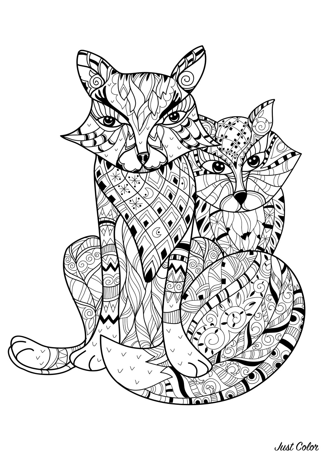 Color these two foxes and their incredible patterns