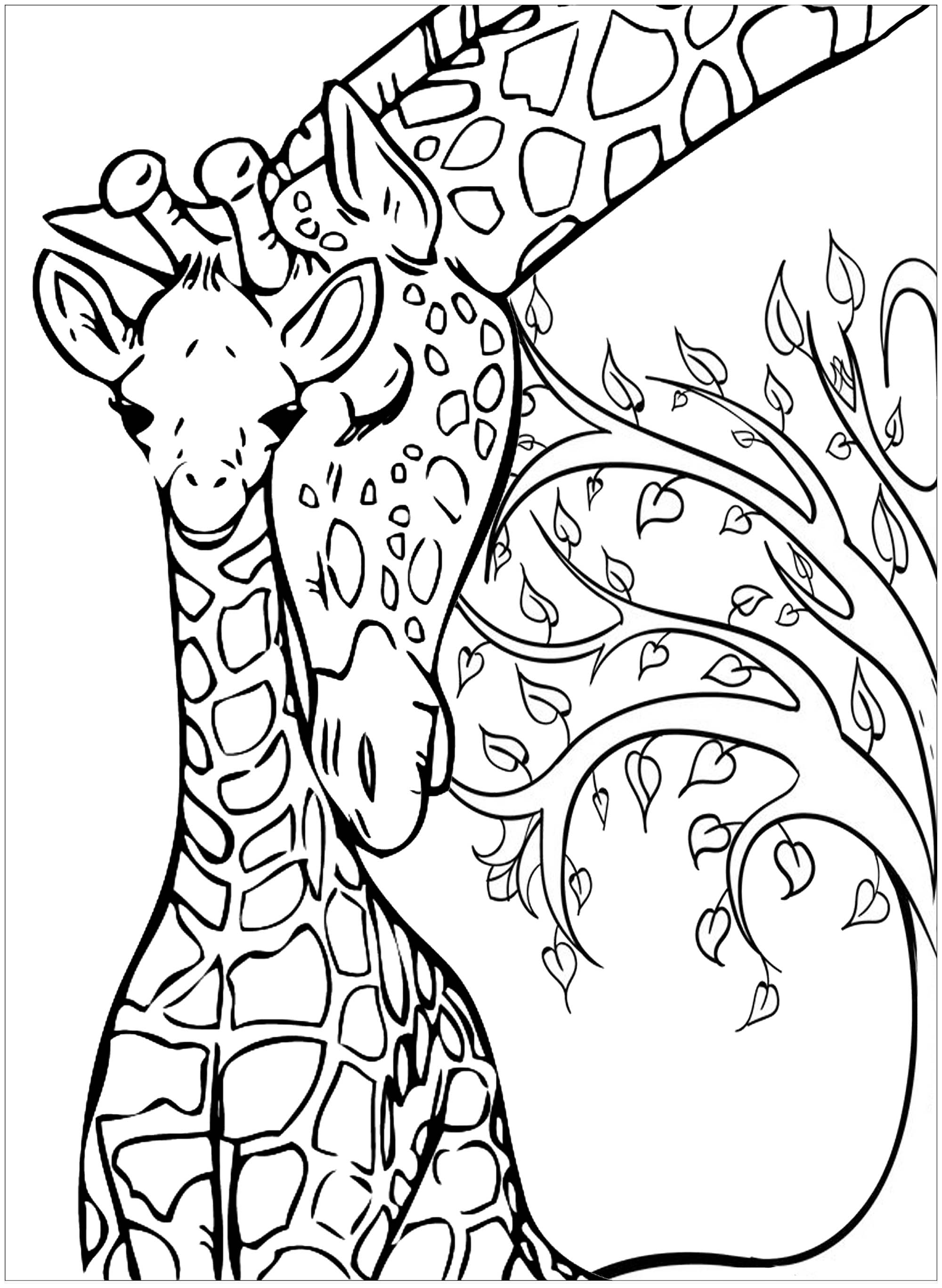 - Baby Giraffe And His Mother - Giraffes Adult Coloring Pages