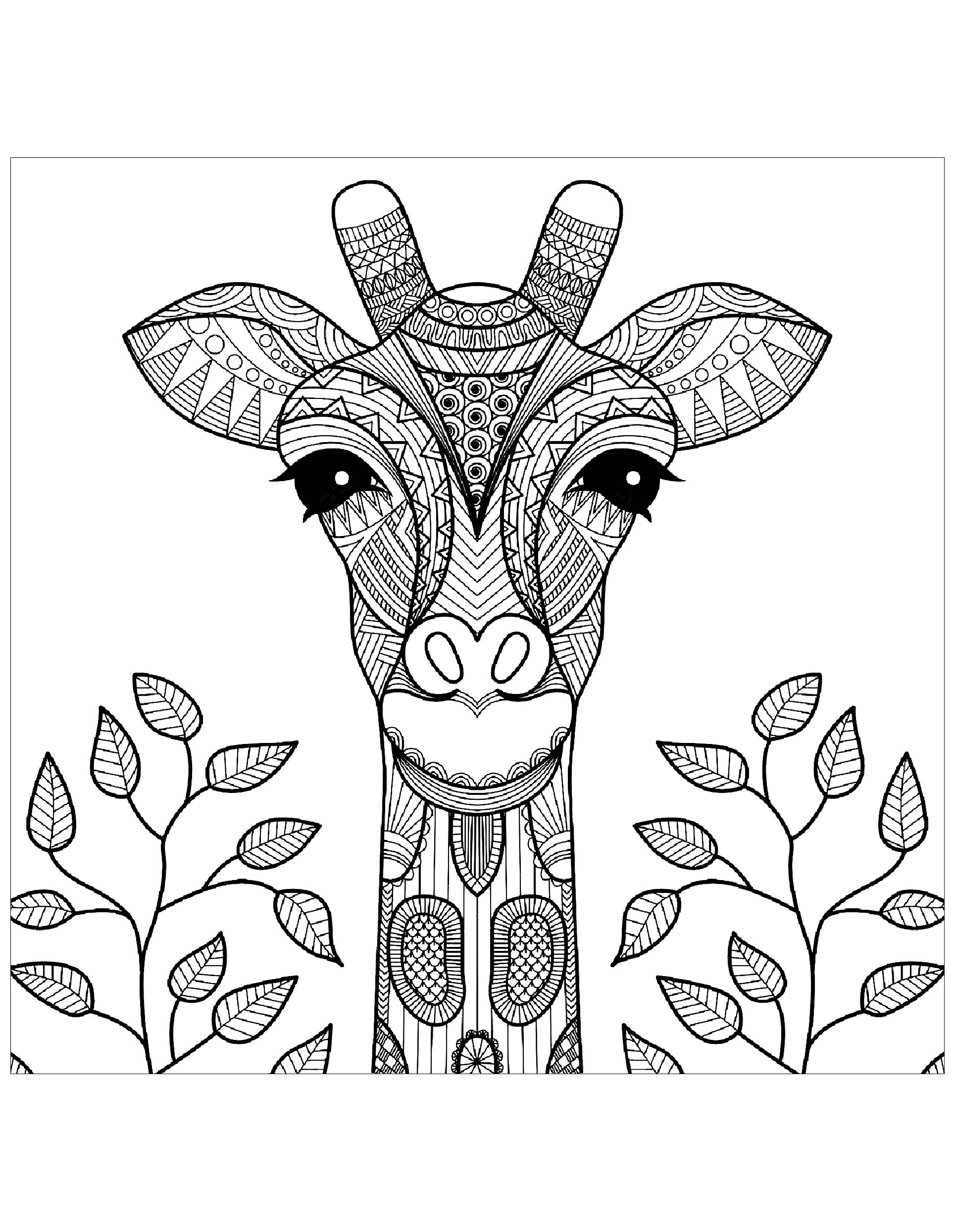 - Giraffe Head With Leaves - Giraffes Adult Coloring Pages