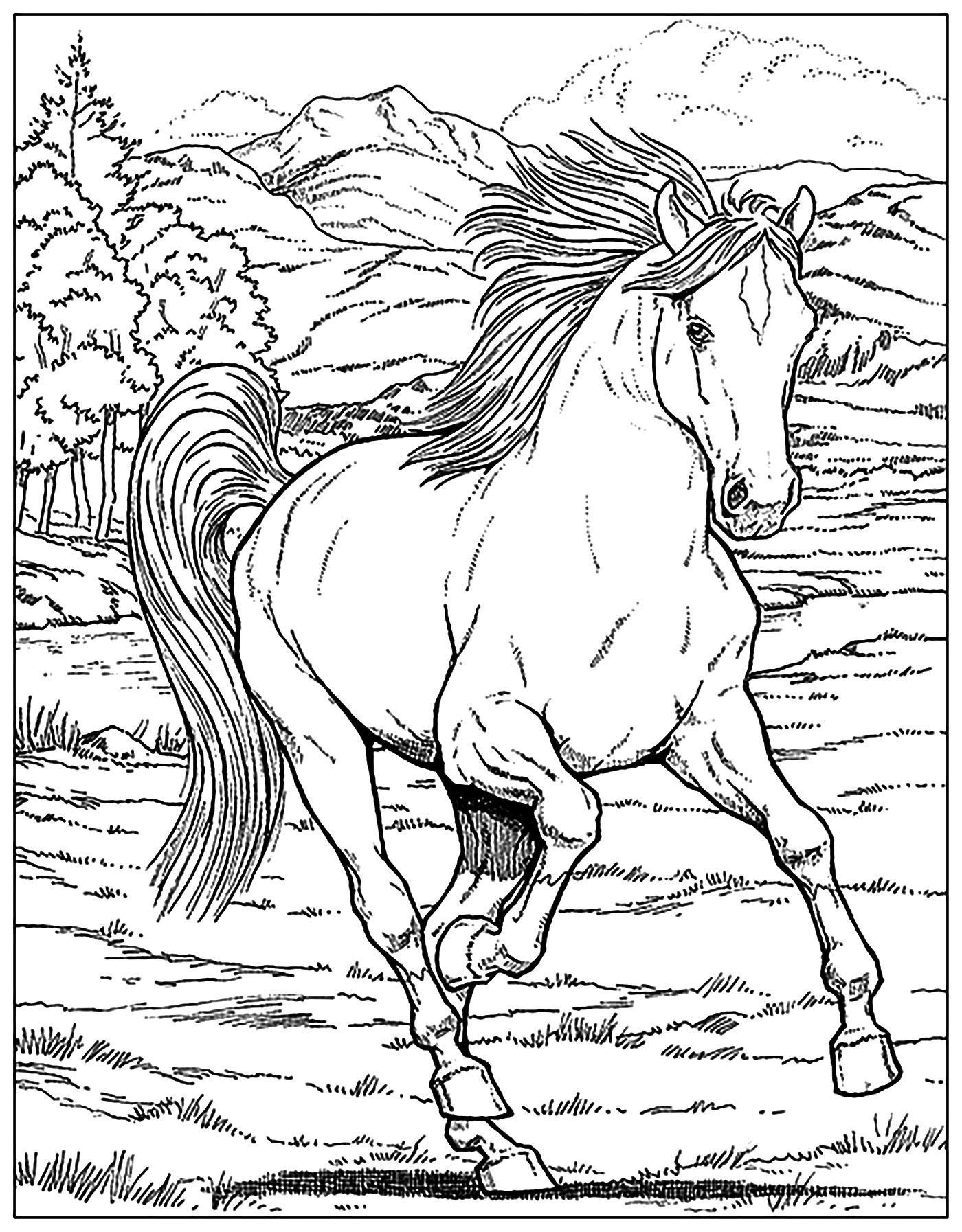 horse adult coloring pages Horses Adult Coloring Pages horse adult coloring pages