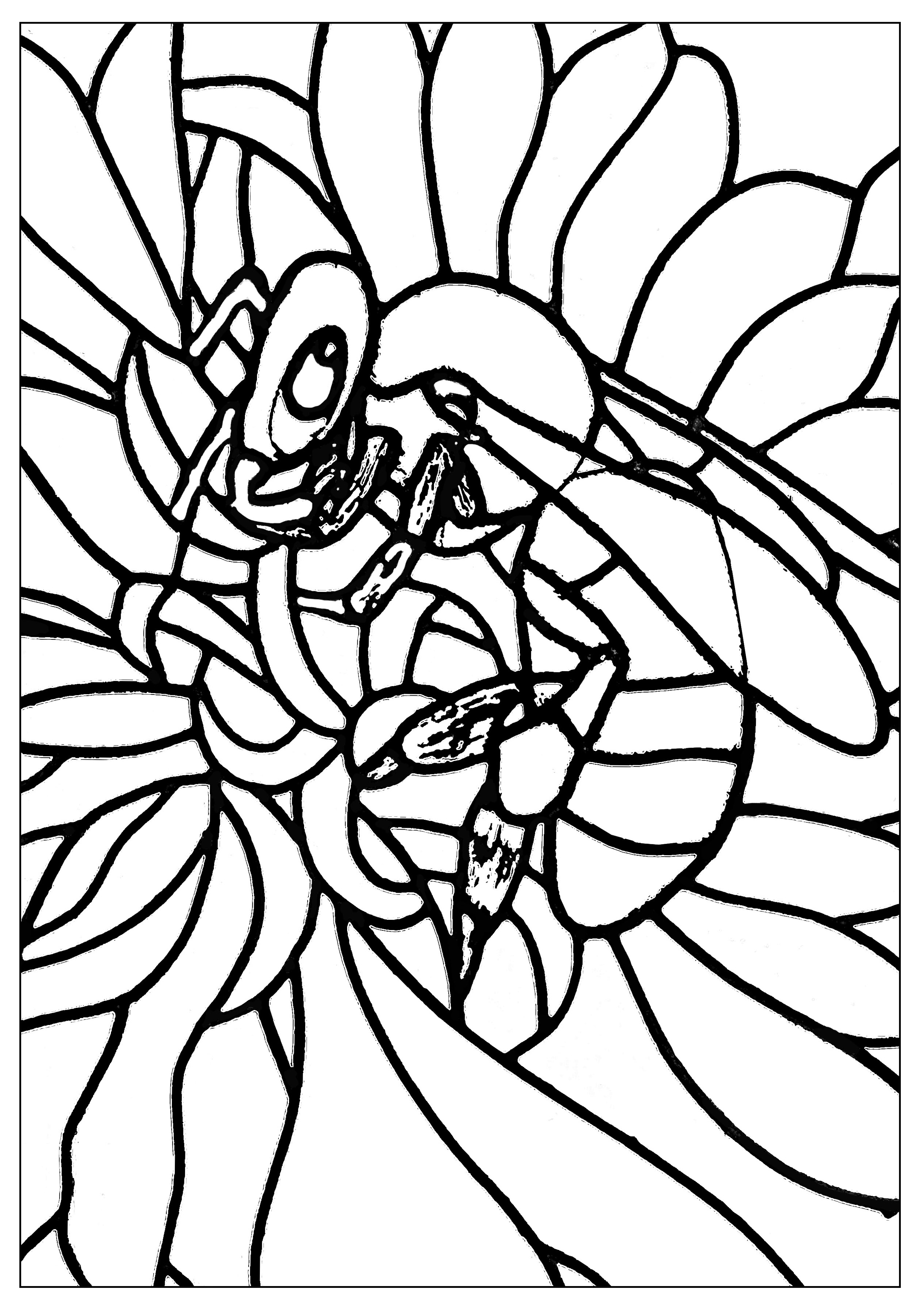 Cute bee to color, with areas with large borders