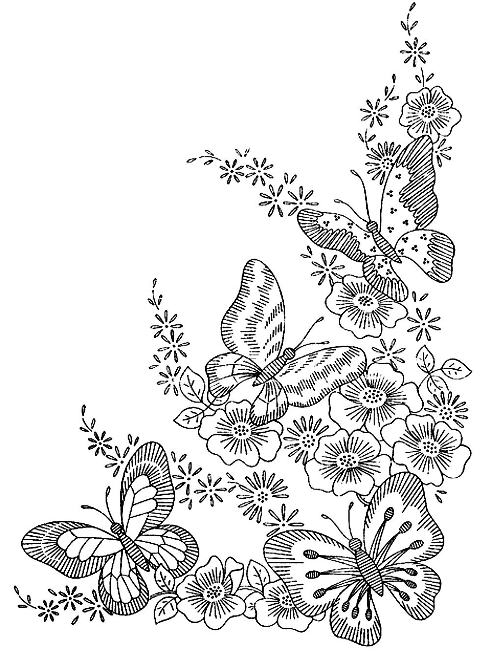Coloring pictures for adults - Coloring Adult Difficult Butterflies Free To Print