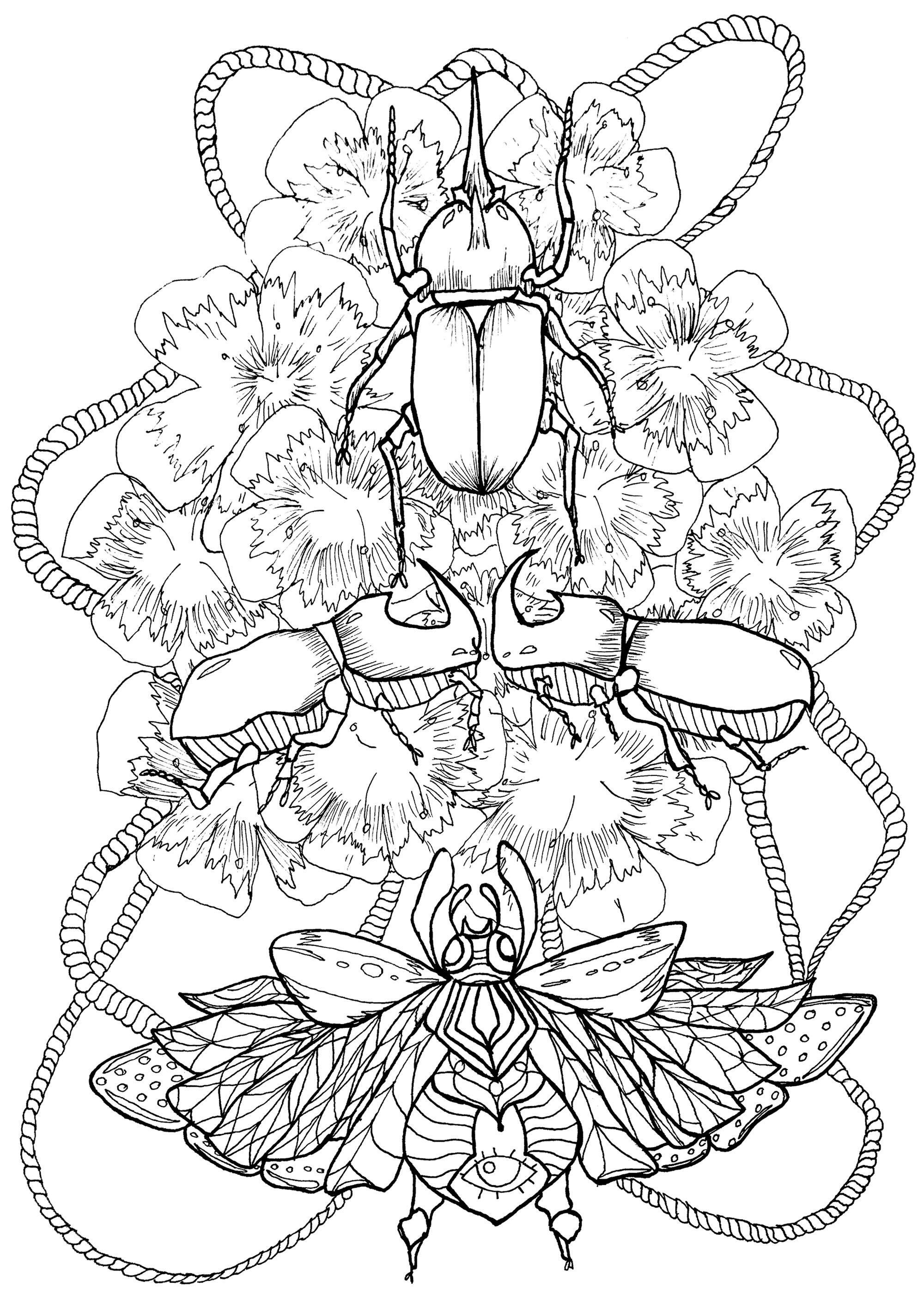 Nice coloring page mixing flowers and beetles, surrounded by a finely braided rope
