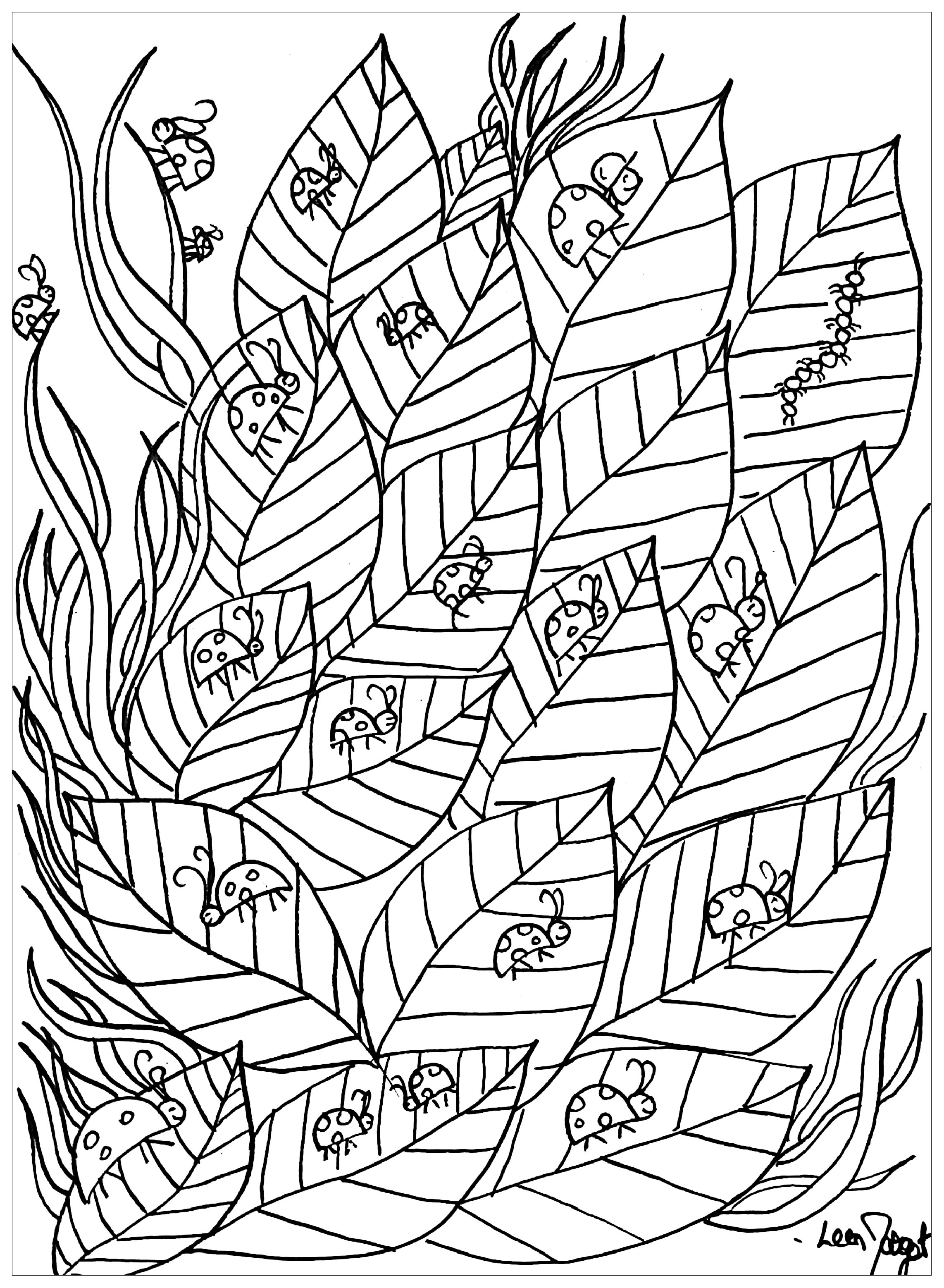 Ladybugs on leaves - Butterflies & insects Adult Coloring Pages