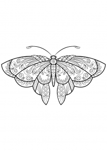 Coloring butterfly beautiful patterns 1