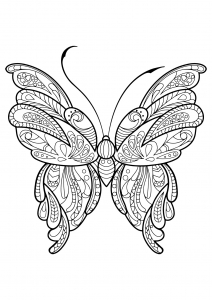 Coloring butterfly beautiful patterns 16