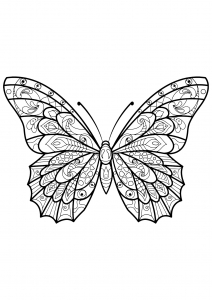 coloring butterfly beautiful patterns 3