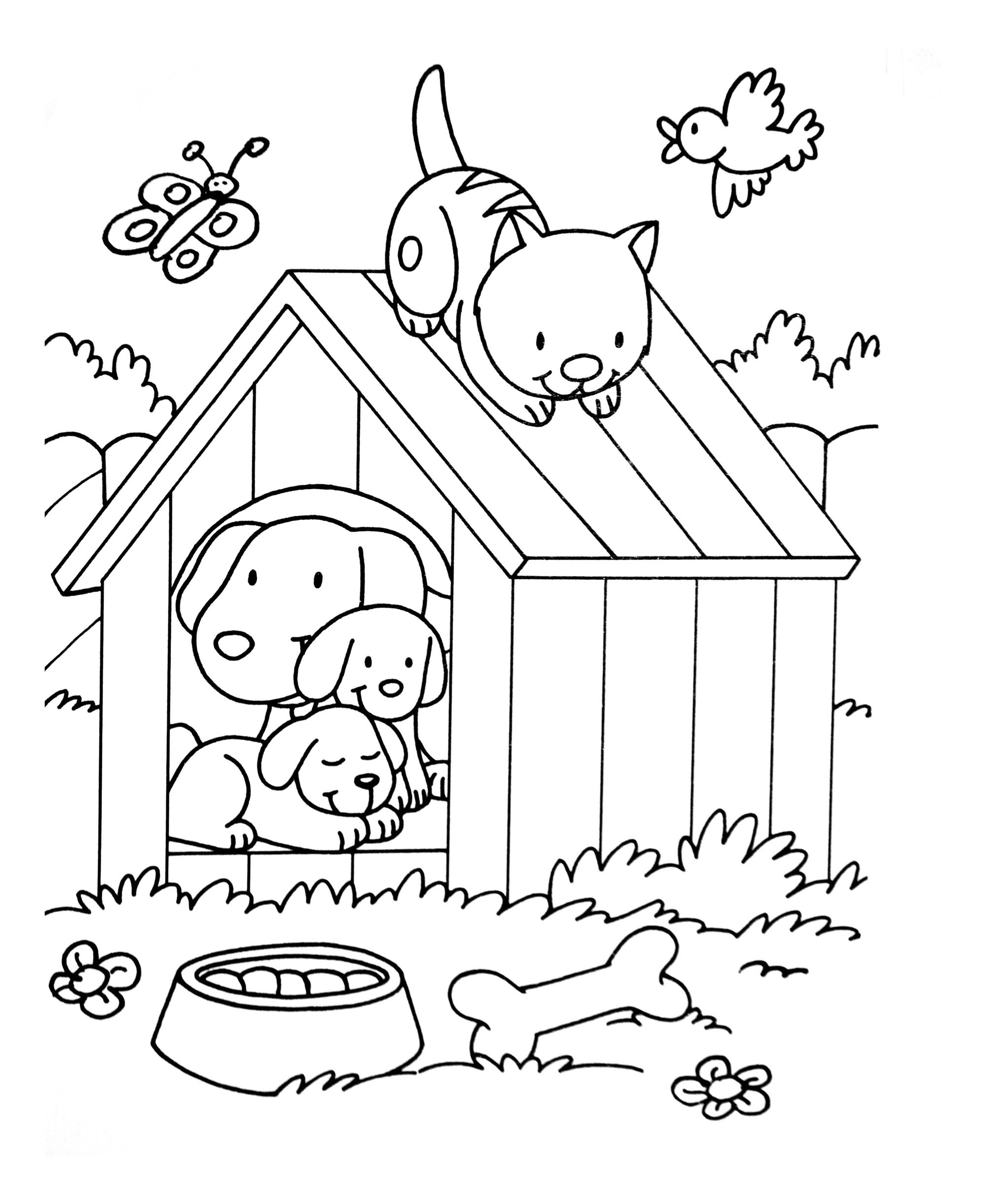 Dog cat birdjpg | Animal Coloring pages for kids to print & color